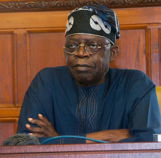 Ohaneze Ndigbo Accuses Tinubu Behind Plot to Remove Ekweremadu