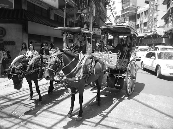 Horse-drawn or kalesa at Ongpin Street