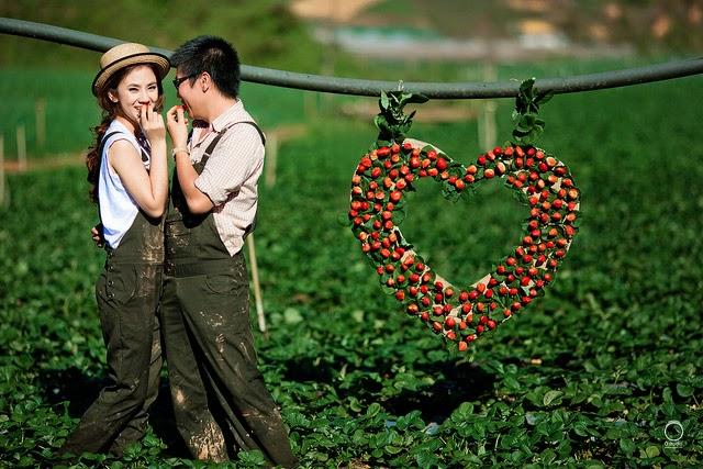 Địa điểm chụp ảnh cưới đẹp ở Đà Lạt ~ Thiên đường mộng mơ2