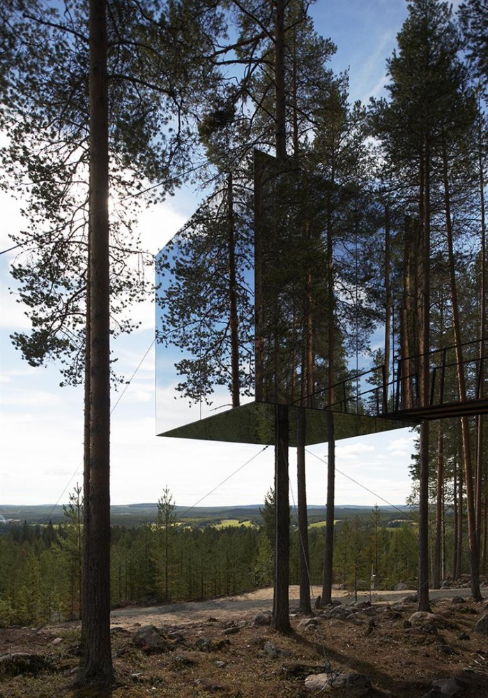 Unique unusual tree hotel harads sweden most beautiful for Unusual small trees