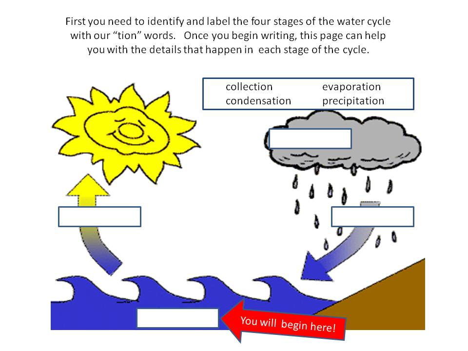 water cycle essay questions The new topic short essay on water cycle is one of the most popular assignments among students' documents if you are stuck with writing or missing ideas, scroll down and find inspiration in the best samples.