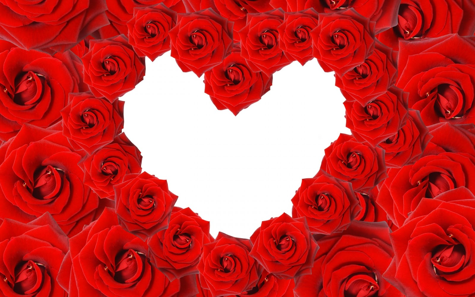 Red Roses Love Heart Image