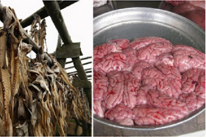 10 Makanan Nikmat dan Populer Tapi Berbahaya