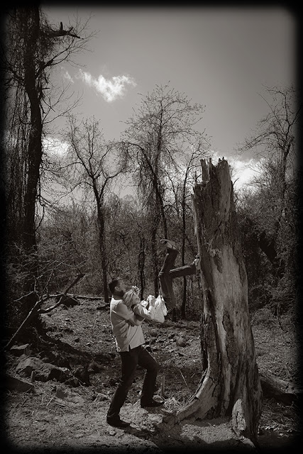 Engagement Photo Loudoun County Photographer