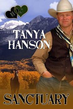 Nominated Best Inspirational Romance of 2011, CAPA Awards