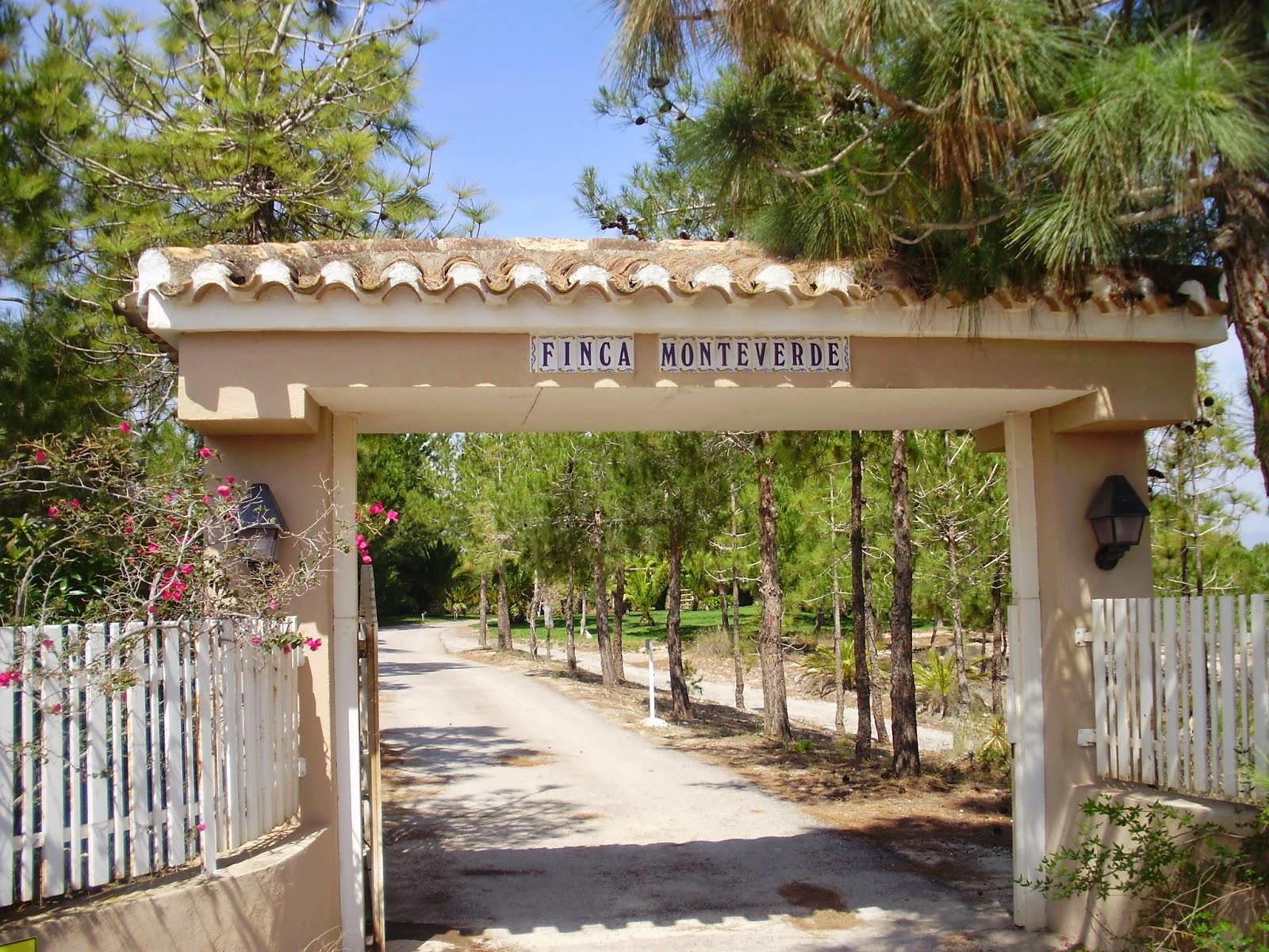 El bancalico del cervantes finca monteverde - Entradas rusticas ...