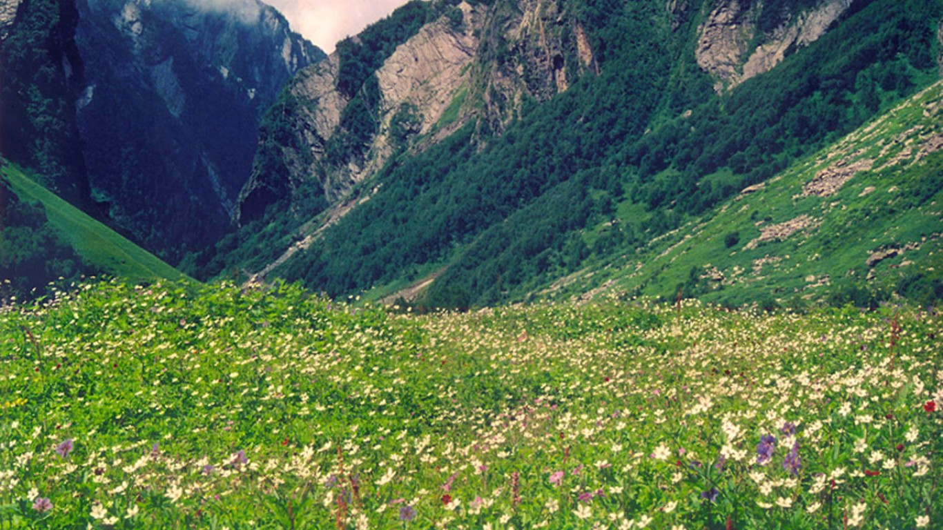 BEAUTY OF INDIA Valley of Flowers