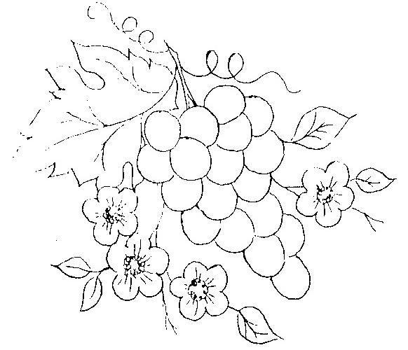 Risco Para Pintura Em Tecido De Frutas