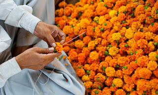 A Garland of Marigolds and a Heart Full of Prayer for Nepal