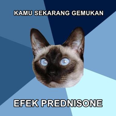 kamu sekarang gemukan efek prednisone