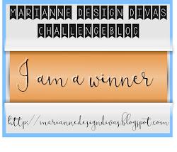 winnaar challenge 12