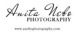 Blogger & Brand Work