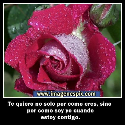 Imágenes de amor con rosas y corazones - Imagenes De Amistad Con Rosas