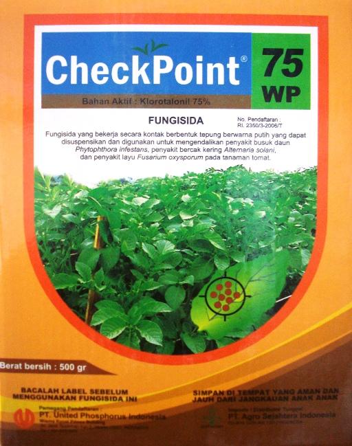 ... solani dan Penyakit Layu Fusarium Oxysporum pada tanaman hortikultura