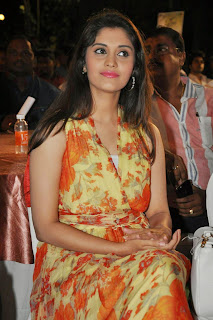 Actress Surabhi Pictures in Floral Dress at 365 Days Audio Launch  9.JPG