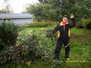 Talonmies- ja puutarhatyöt ruohikoiden leikkauksista pihapuiden leikkauksiin ja kaatoihin