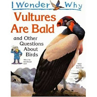 I Wonder Why Vultures Are Bald