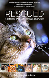 Portion of sales goes to Anjellicle Cats Rescue!