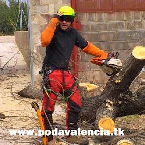 www.podavalencia.tk
