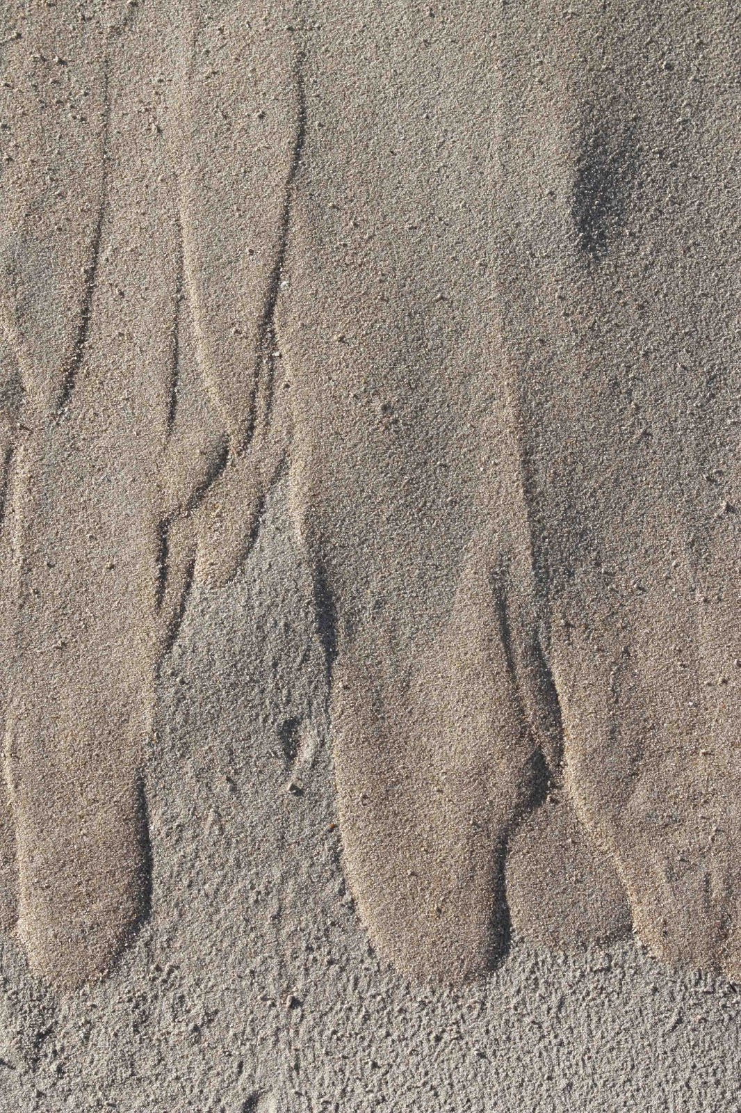 long fingers of sand