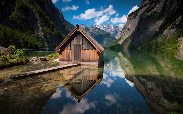 Best Jungle Life Norway, Bavaria, Germany, hud, lake