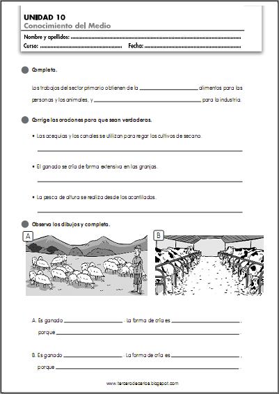 http://www.primerodecarlos.com/TERCERO_PRIMARIA/abril/Unidad10/cono/fichas/cono5.pdf