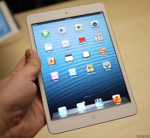 iPad Mini with 7.9-inch screen resolution of 1024 x 768 pixels as the iPad 2.