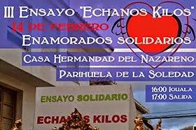 Ensayo Solidario