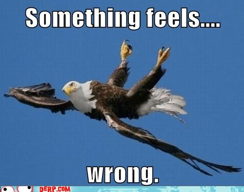 something-wrong-eagle.jpg