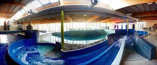 piscine toboggan vague   NAUTISPORT PISCINE AQUAPLANET ENGHIEN