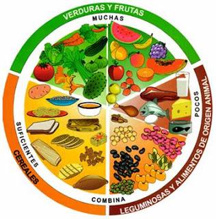 Alimentos que puede comer un diabetico con diabetes mellitus tipo 1 y 2 sintomas y tratamiento - Alimentos que no debe comer un diabetico ...