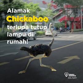 Chikaboo