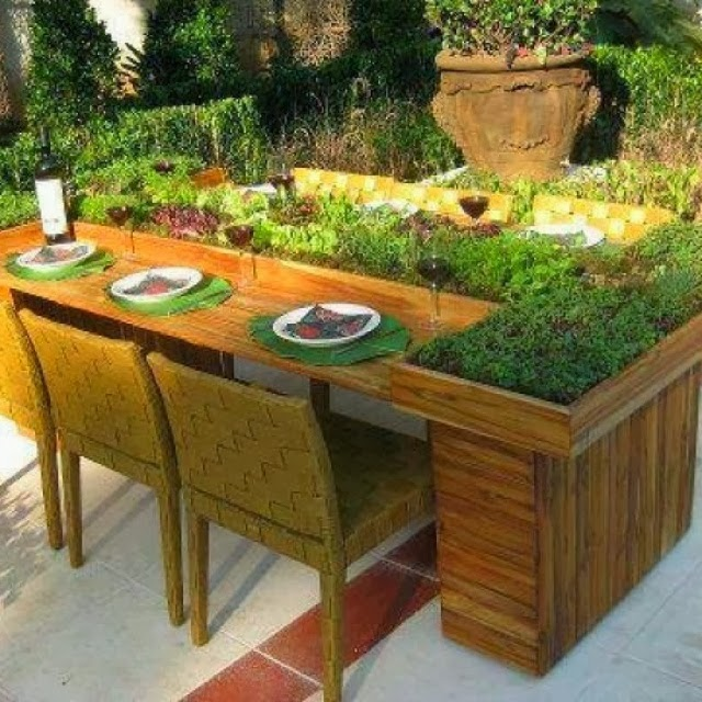 Herb Garden on table
