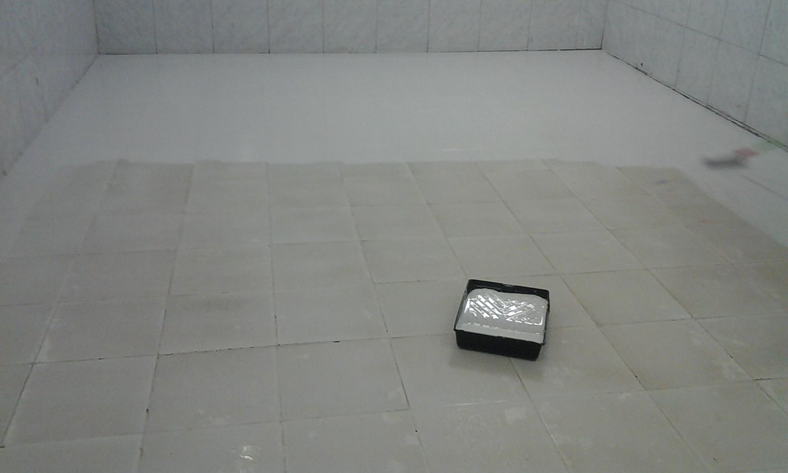 Piso ceramica pintado tinta epoxi 05 cinco anos de - Pintura para pintar ceramica de piso ...
