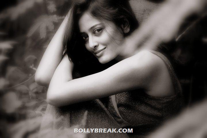 , Nidhi Subbaiah Hd Wallpapers - Bollybreak