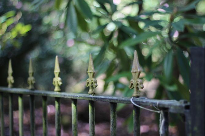 Pretty fence