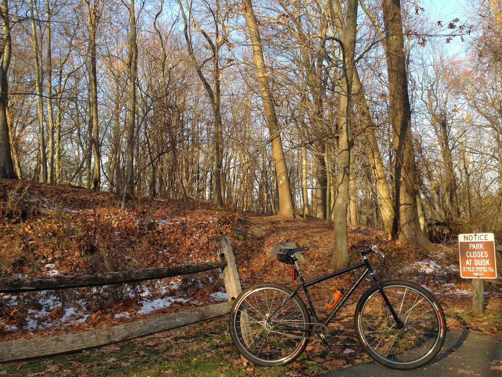 Bike Snob Nyc Blog Guest Blogger Bike Snob NYC