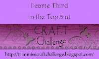 12/8/11 CRAFT Challenge Winner!