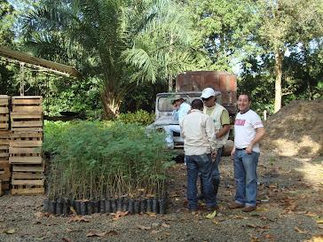 Jornada de Reforestación y Gestión del Riesgo