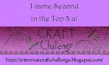 CRAFT challenge - June 2011