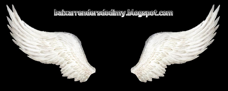 asas de anjo ficam - photo #1
