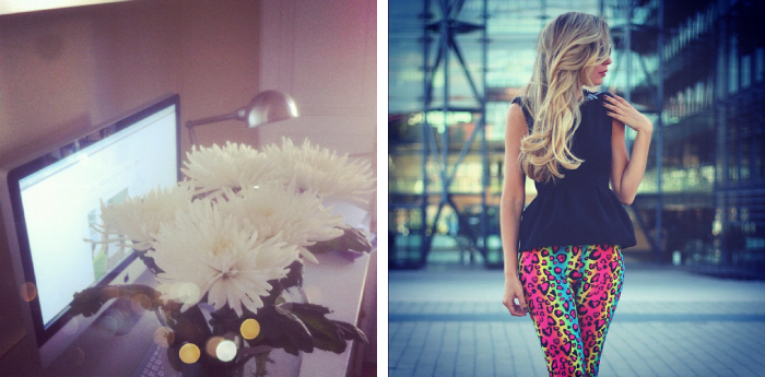 Anastacias, flowers, My Showroom, gift, love, look, neon leggings, leopard print, ebay