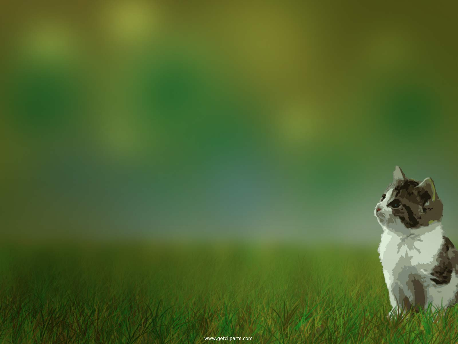 funny animals wallpapers cats - photo #21