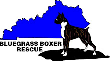 Support Local rescue