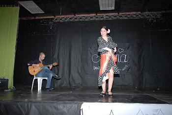FEST. ALMA 2011