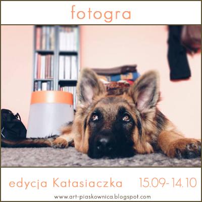 http://art-piaskownica.blogspot.com/2014/09/fotogra-z-perspektywy-zaby.html
