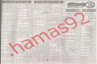 وظائف جامعة دمنهور 2013