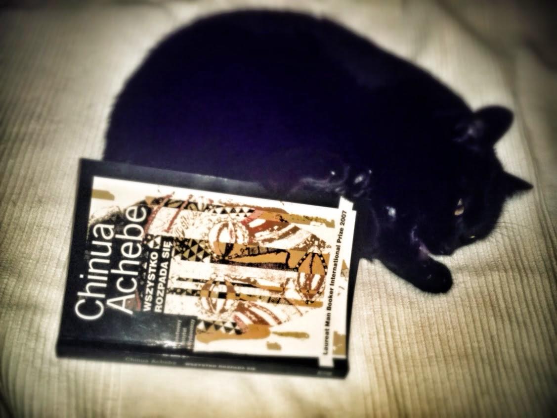 kot, Stabłowice, czytanie, książka, Chinua Achebe, Świat się rozpada, Things fall apart