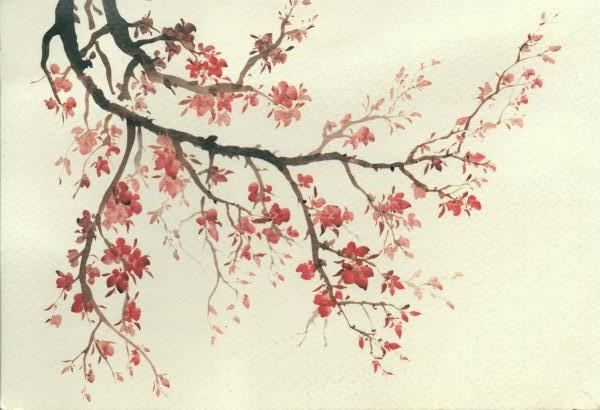 pink cherry blossom on a branch, watercolour painting