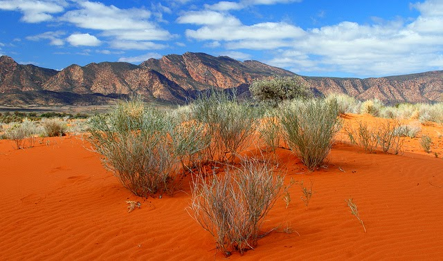 Mungo National Park Australia  City new picture : Mungo National Park,Australia